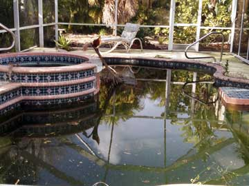 Regardless of how bad your pool may look...